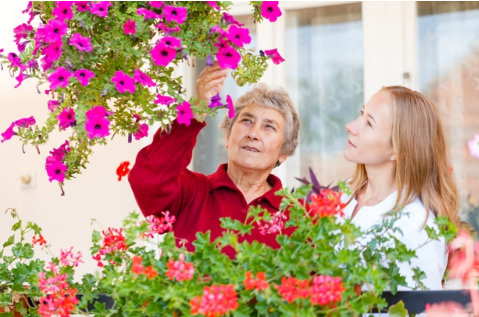 Fun-Activities-You-Can-Enjoy-with-a-Senior-Loved-One